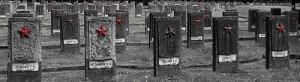 cmentarz-w-braniewie